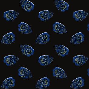 Rainbow Blue_Bioluminescence Design Challenge