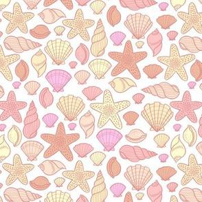 Seashells - small scale warm
