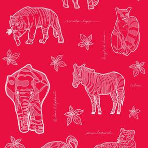 Safari LOVE & LIVE_ White on Red