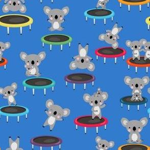 Koalas Gymnastics On Trampolines Blue
