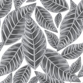 Island Palms - greys