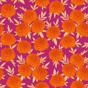 Marigold - raspberry