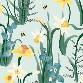 Daffodil Rumors