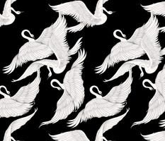 Swans Flying in Black